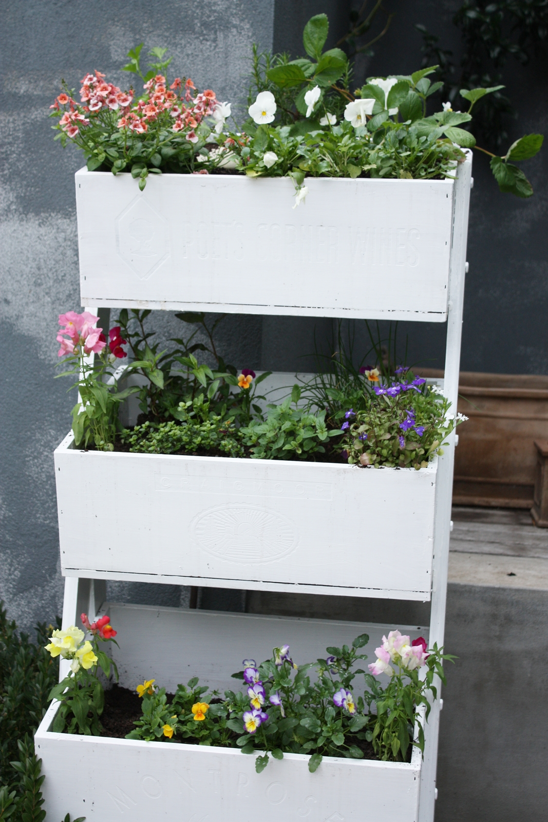 An upcycled wooden planter a journey from pine