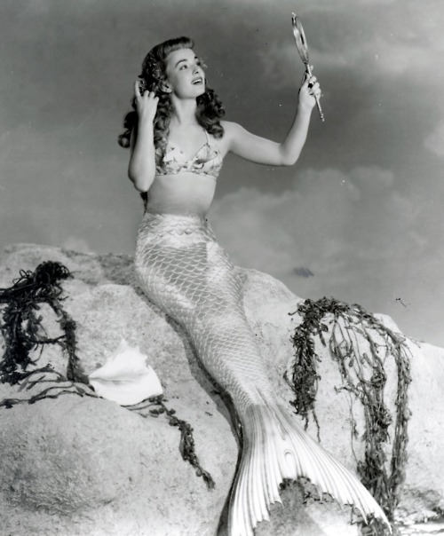 Ann Blyth - Gallery Colection