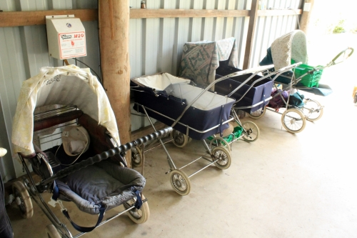 Prams for the raspberries