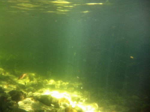 Light penetrating river