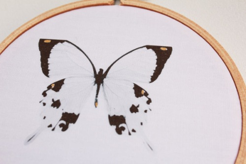 Butterfly hoop art