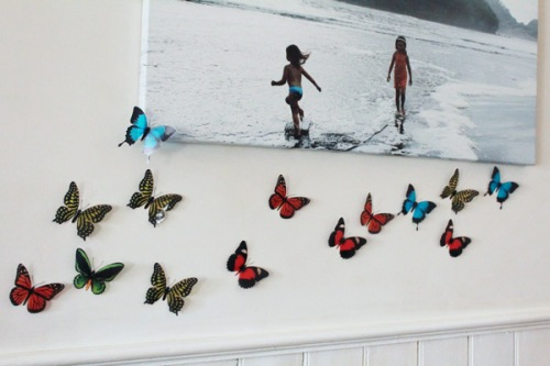 Flock of butterflies on wall