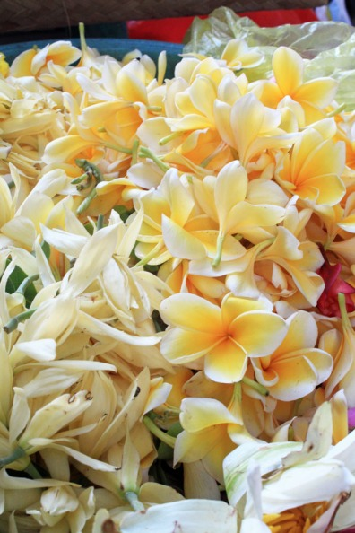 Frangipanis and flowers for offerings, Ubud market, Bali