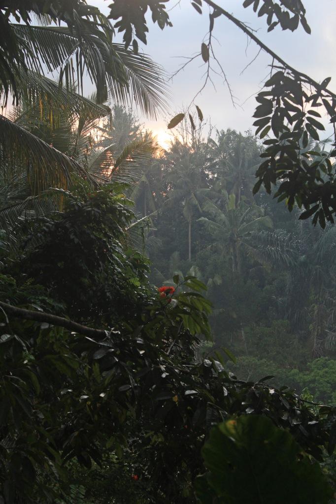 Meditation view (full size)