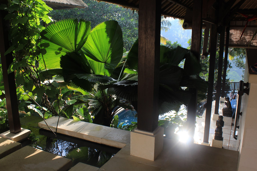 Villa Vajra - light and palms and bliss