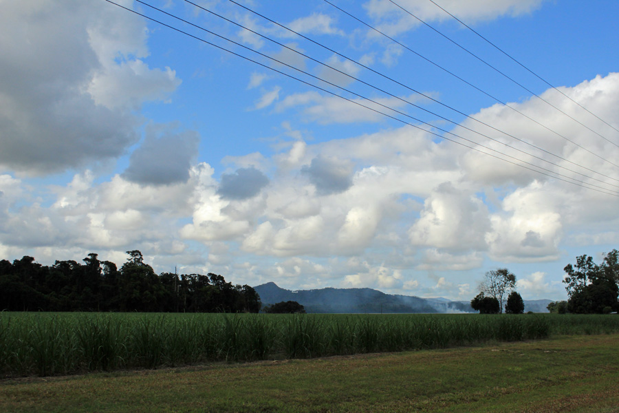 Cane fields with burning off FNQ